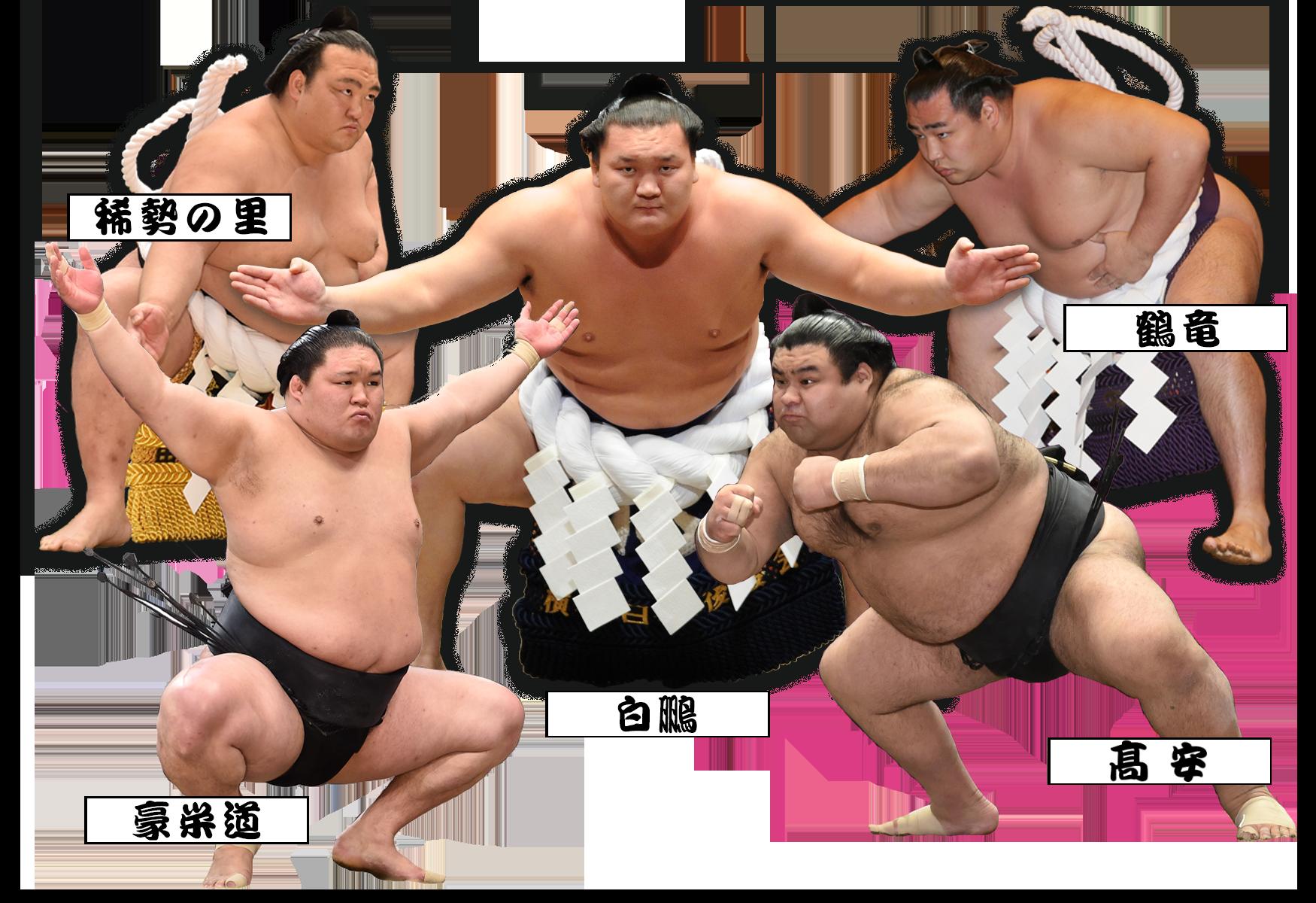 平成三十年夏巡業大相撲立川立飛...